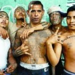 GOP Silent as Obama's Illegals Cause Crime Wave | The Daily Caller