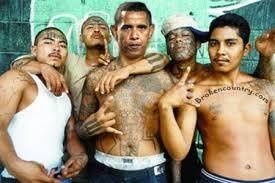 illegal_criminals